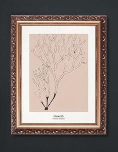 Seaweed Print  PRINTABLE FILE. Modern Vintage by ILKADesign