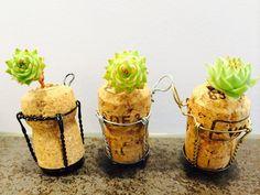 Mini-Korken-Garten