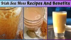 Here are some natural healthy and easy to prepare irish sea moss recipes approved by Dr. Sebi for supplementing daily. Here are some natural healthy and easy to prepare irish sea moss recipes approved by Dr. Sebi for supplementing daily. Alkaline Diet Plan, Alkaline Diet Recipes, Vegan Recipes, Vegan Food, Plant Based Eating, Plant Based Diet, Key Lime Water Recipe, Key Lime Fruit, Vegan Transition
