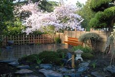 New backyard - Japanese Garden Landscaping Design Ideas