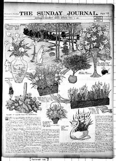 """""""Gifts from Nature at Eastertide,"""" The Minneapolis Journal (Minneapolis, MN), April Library of Congress, Chronicling America: Historic American Newspapers. Library Of Congress, Minneapolis, Coloring Books, Vintage World Maps, Journal, History, American, Nature, Gifts"""