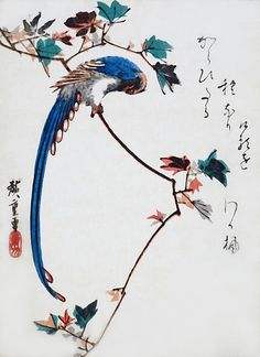 A blueprint for a tattoo the tattoo artist is sakamoto gora blue magpie on maple branch ando hiroshige graph paper journal 150 pages x 11 inches x centimeters diary composition book malvernweather Image collections