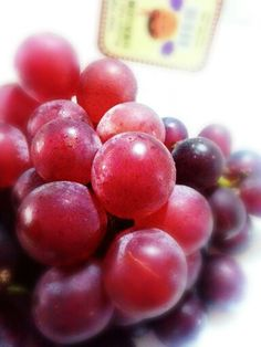 Taiwan Ruby Grapes