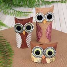 Cutie owls from toilet tubes and bottle tops.