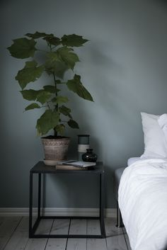 plants in the bedroom. Blue-grey bedroom - via Coco Lapine Design jotun Blue-grey bedroom Blue Gray Bedroom, Bedroom Colors, Bedroom Green, Bedroom Interior, Home, Interior Design Living Room, Bedroom Inspirations, Blue Green Bedrooms, Cool Room Designs