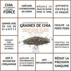Tips for Anti Diet Solution - Les Bienfaits de la Graine de Chia Proper Nutrition, Sports Nutrition, Healthy Nutrition, Healthy Tips, Nutrition Classes, Nutrition Activities, Paleo Diet, Healthy Foods, Natural Remedies