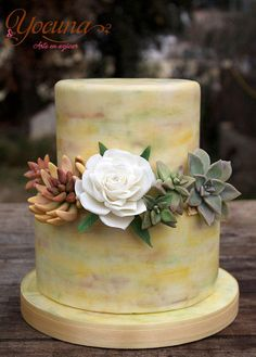 Cake with rose and Succulent plants. Flowers made ​​gum paste. Totally edible.