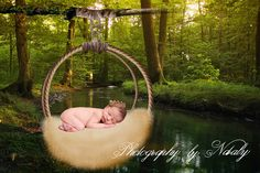 Newborn baby digital backdrop | background photo props |Forest Basket Dreamcatcher Fairy tails by GraphicsSt on Etsy