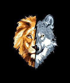 Wolves and lions are one of the most recognizable animals on the planet. Tattoos are body art that shows a part of your personality to the rest of the world. Below, we are going to mention lion and wolf tattoo ideas and designs. Tribal Tattoos, Wolf Tattoos, Lion Tattoo, Tattoos Skull, Funny Phone Wallpaper, Lion Wallpaper, Wolf Artwork, Lion Drawing, Your Spirit Animal