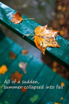 ALL OF A SUDDEN, #SUMMER COLLAPSED INTO #FALL