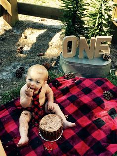 1st birthday Lumberjack Cake Smash!