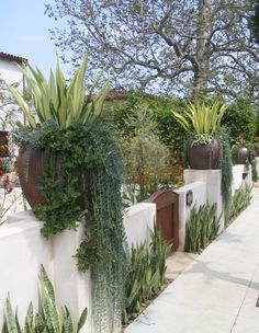 Garden Ideas : Interesting Spanish Front Yard Landscaping Ideas Photo Mediterranean Designs Amys Home Garden Trees Small Design Colors Tuscan Style Patio California Decor Italian mediterranean landscaping designs Garden Ideass Backyard Vegetable Gardens, Vegetable Garden Design, Outdoor Gardens, Dry Garden, Gravel Garden, Fence Garden, Garden Pool, Luxury Landscaping, Backyard Landscaping