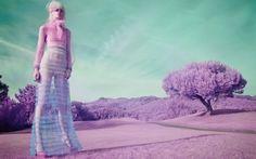 Un anno di moda raccontato attraverso gli scatti dei fotografi più influenti nel panorama internazionale, in un riassunto per immagini a cura di Alessia Gl