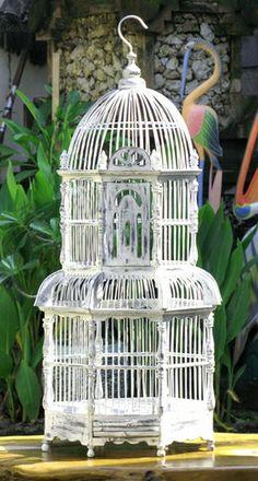 White Handcrafted Teak Bird Cage #saveoncrafts #dreamwedding