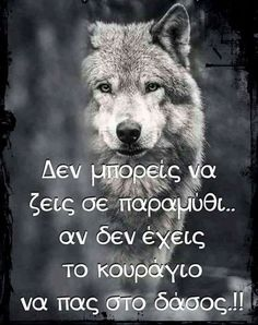 Movie Quotes, Life Quotes, Work Success, Wolf Quotes, Angels And Demons, Greek Quotes, Self Help, Animals And Pets, Picture Video