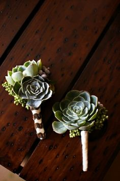 i like succulents for the guys, but don't think i want it for my bouquet. Succulent Bridal Bouquet and Boutonnieres - Wedding Flowers - Zimbio Boutonnieres, Succulent Boutonniere, Succulent Bouquet, Groomsmen Boutonniere, Wedding Bouquet Succulents, Corsage And Boutonniere, Cactus Wedding, Floral Wedding, Wedding Bouquets
