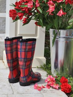 I love to celebrate Tartan Week, but this year, it was just too cold for a picnic. Nevertheless, I've been outside, walking off t...