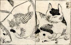 Domestic cat nursing kittens | ukiyo-e woodblock print, 1720  | Tachibana Morikuni