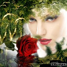 Free Picture of Red Roses | Woman, red Rose and birds Picture #109723191 | Blingee.com