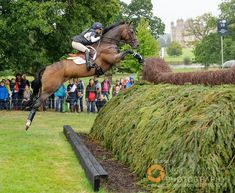 Some more action from Saturday's very wet cross country. Here's @immi_gloag and BRENDONHILL DOUBLET. More via the link on my profile. #Nikon #rain @Burghley horse #horses #horsesofinstagram #eventing #picoftheday #equine #equestrian #lrbht
