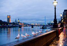 landmarks on the Thames