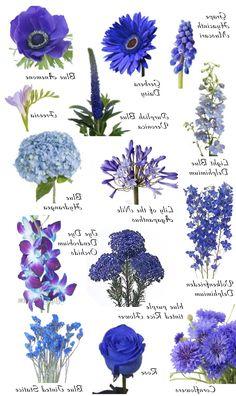 Blue Flower Namesbest
