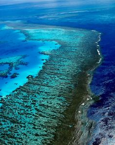 Great Barrier Reef, One Of The Seven Natural Wonders Of The World Beautiful Islands, Beautiful World, Beautiful Places, Beautiful Scenery, Amazing Places, Great Barrier Reef, Maui Vacation, Dream Vacations, Los Angeles California