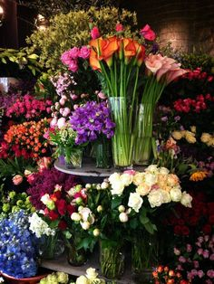 Love to go to the flower shops-gardening section and get fresh cut flowers. Tulips, gladiolas,sweet peas & etc. They always brightens my day! Fresh Flowers, Beautiful Flowers, Hibiscus Flowers, Cactus Flower, Exotic Flowers, Colorful Flowers, Spring Flowers, Flower Shop Interiors, Types Of Roses