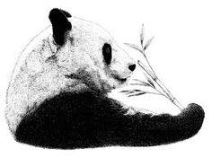 I FOUND MY PANDA TATTOO!!!!!!!! <3 YAY :)