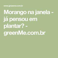 Morango na janela - já pensou em plantar? - greenMe.com.br