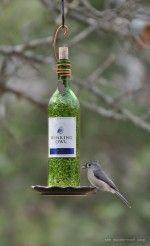 Como transformar garrafas de vinho em comedouros para pássaros