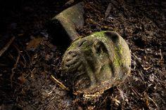 """Fotografia: Dave Yoder - National Geographic  Era definitivamente uma cidade anciã. Arqueólogos, no entanto, não acreditam mais na existência de uma única """"cidade perdida"""", ou Ciudad Blanca, como descrita pelas lendas. Eles acreditam que Mosquitia abrigava muitas """"cidades perdidas"""", que, quando juntas, representam algo muito mais importante — uma civilização perdida."""