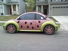 The watermellon beetle:)  the only car to get away with this kind of paint job!