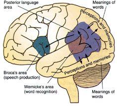 http://shareyt.com/SocialCounter.php?url=http%3A%2F%2Fwww.fourquadrant.com%2Fthe-benefits-of-b2b-storytelling-vs-powerpoint-presentations%2F