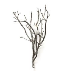Branch Sconce - Silver from Z Gallerie    http://www.zgallerie.com/p-11155-slant-decanter.aspx    $130