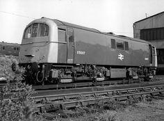 at Stewarts Lane Electric Locomotive, Diesel Locomotive, Uk Rail, Paris Metro, Train Pictures, British Rail, Electric Train, Transportation, Old Things