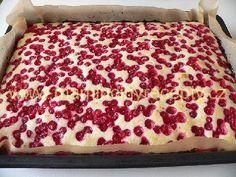 Dvoubarevný rybízový koláč – Maminčiny recepty Animal Print Rug
