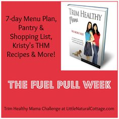 Trim Healthy Mama Menu Plan  Grocery List | The Fuel Pull Week