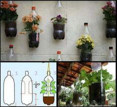 Fiori in bottiglia