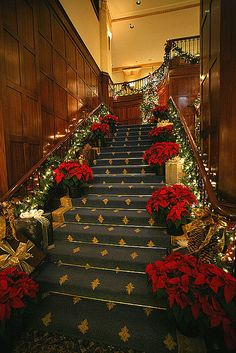 Heathman Hotel Christmas Installation