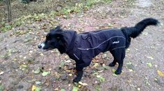 Zaki and his new raincoat By Rukka collection