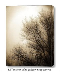 Nature Trees Branches Foggy Morning Surreal by PaintedTulipStudio, $65.00