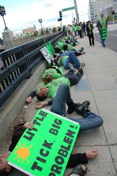 The Boston Lyme Disease Protest Flash Death