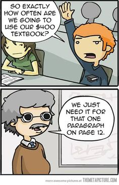 the professor looks like a professor I had... and we never had to use the book for that class either!