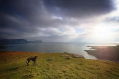 Schottland_Neist Point_Isle of Skye_Wohnmobil_Hund_die Roadies