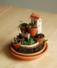 Fairy Garden-love this Mediterranean inspired totally unique miniature garden Mini Fairy Garden, Fairy Garden Houses, Gnome Garden, Garden Pots, Potted Garden, Indoor Garden, Potted Plants, Little Gardens, Small Gardens