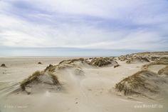 Das Naturschutzgebiet Amrumer Dünen