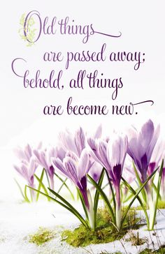 A great verse and reminder for SPRING.  2 Cor 5:17 (KJV) Follow us at http://gplus.to/iBibleverses