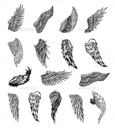 Heraldic wings set for tattoo or mascot design, vector graphics . - Heraldic wings set for tattoo or mascot design, vector graphic illustration - Eagle Wing Tattoos, Wing Tattoo Men, Wing Tattoo Designs, Feather Tattoos, Small Wing Tattoos, Butterfly Tattoos, Eagle Neck Tattoo, Wing Tattoos On Back, Tattoo Sketches