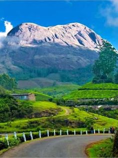 Munnar (Best Honeymoon Destinations In India) | BestHoneymoonDestinationss.blogspot.com